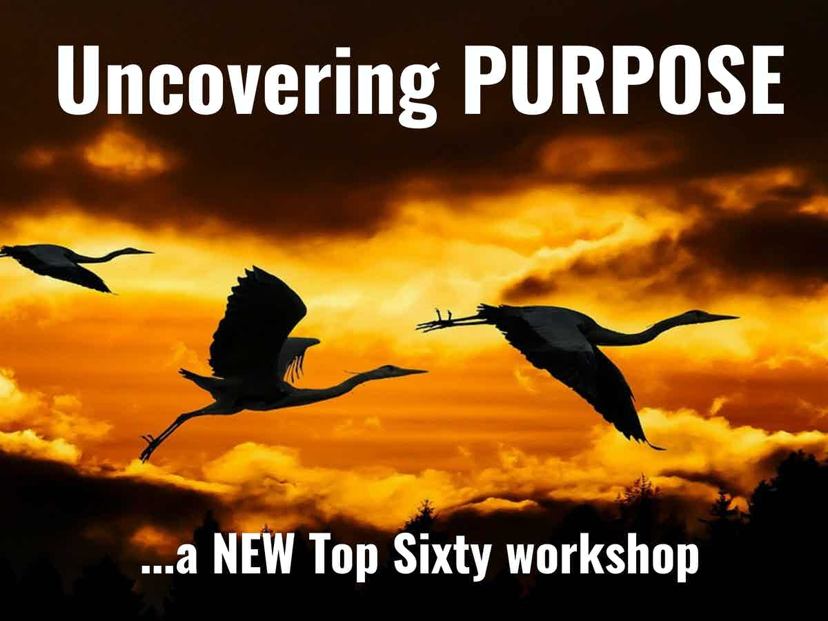 Three flying storks, silhouetted against a yellow sky with words: Uncovering purpose; a NEW Top Sixty workshop