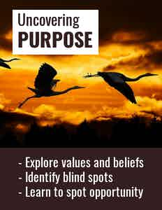 Three flying storks silhouetted against an orange sky, with the words: Uncovering purpose; Explore values and beliefs; Identify blind spots; Learn to spot opportunity