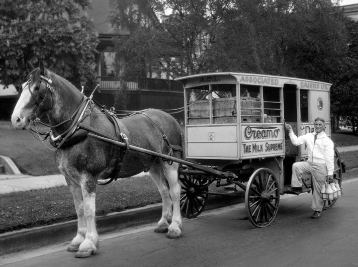 Associated Dairies horse drawn delivery wagon with milkman.